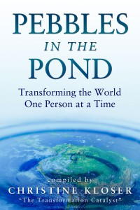 Pebbles In The Pond book cover